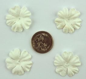 Green Tara - 2cm Petals - White