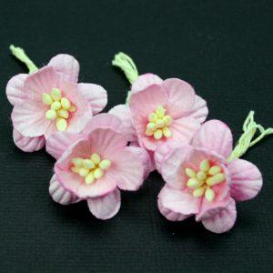 Green Tara -  Cherry Blossoms - Pink