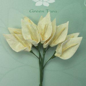 Green Tara  - Calla Lillies - Ivory with Pale Yellow Stamen