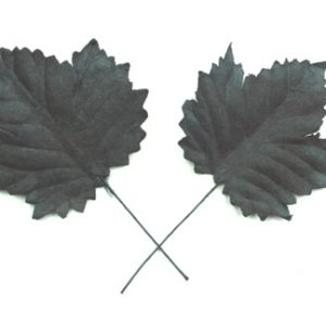 Green Tara - Maple Leaf - Black