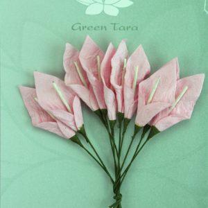 Green Tara  - Calla Lillies - Pale Pink with ivory Stamen