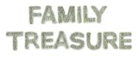 Kaisercraft Sparklet Words -  Family Tresasure