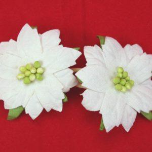 White Poinsettias 5cm