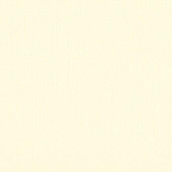 Linen Cardstock - Vintage White