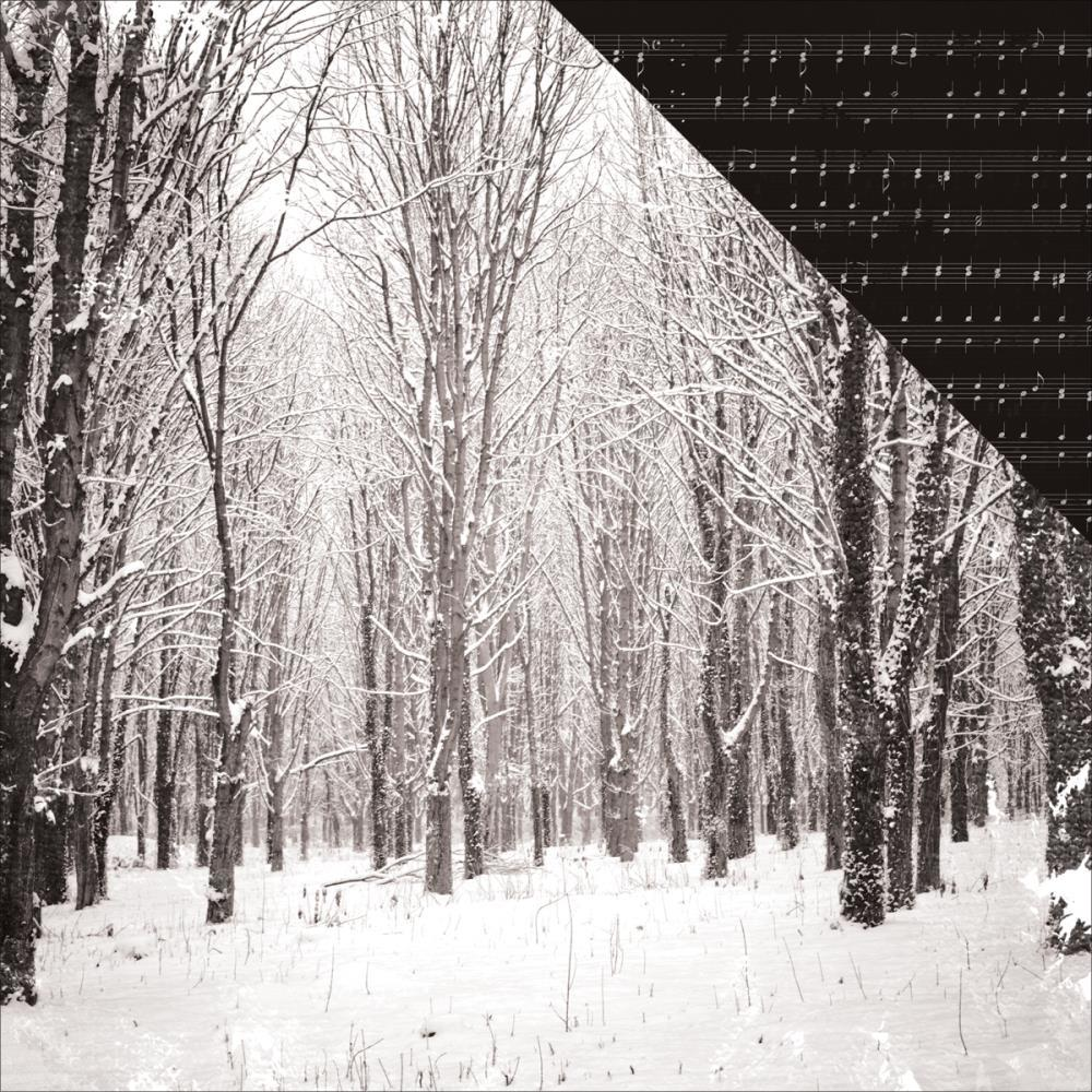 Kaisercraft  Christmas Edition - Paper - Snowcapped