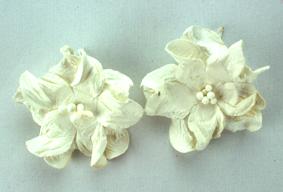 Green Tara - Apple Blossoms - White