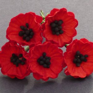 Mulberry Flowers - Poppies