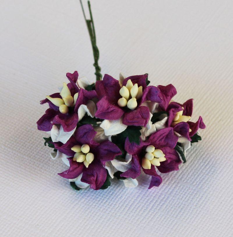 Mulberry Flowers - Gardenia - Small - Purple & White
