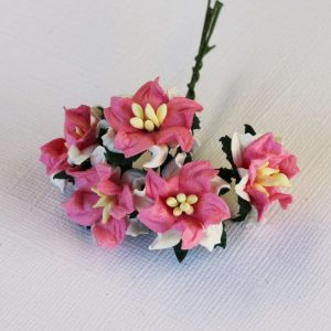 Mulberry Flowers - Gardenia - Small - Pink & White