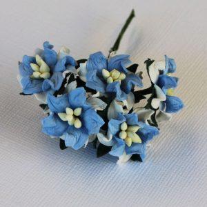 Mulberry Flowers - Gardenia - Small - Blue & White