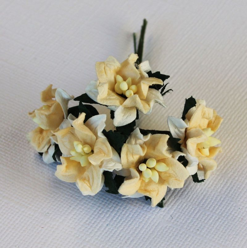 Mulberry Flowers - Gardinea - Small - Crm & White