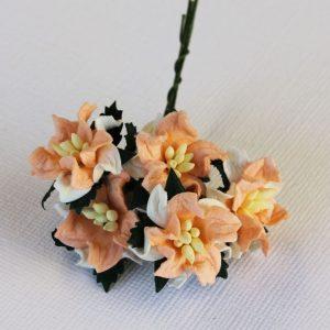 Mulberry Flowers - Gardenia - Small - Peach & White