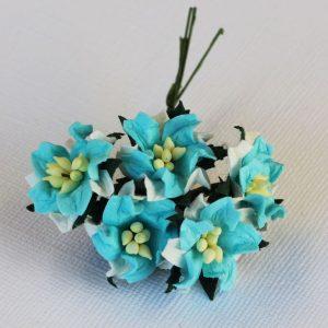 Mulberry Flowers - Gardenia - Small - Aqua & White