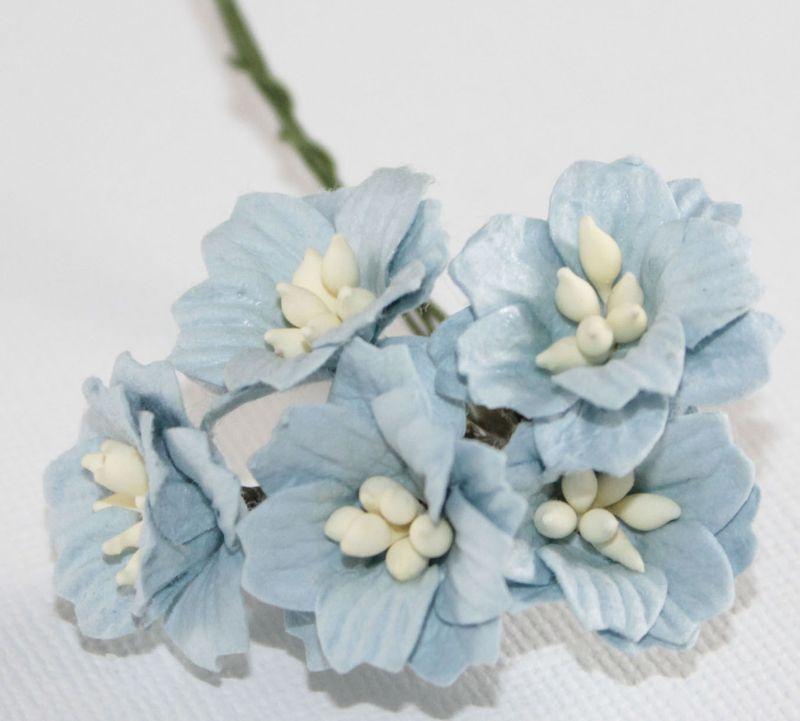 Mulberry Flowers - Apple Blossom - Blue