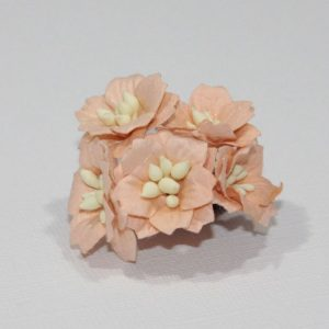 Mulberry Flowers - Apple Blossom - Coral