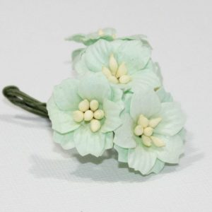 Mulberry Flowers - Apple Blossom - Mint