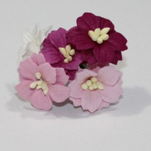 Mulberry Flowers - Apple Blossom - Mixed Pink