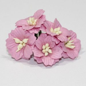 Mulberry Flowers - Apple Blossoms - Pink