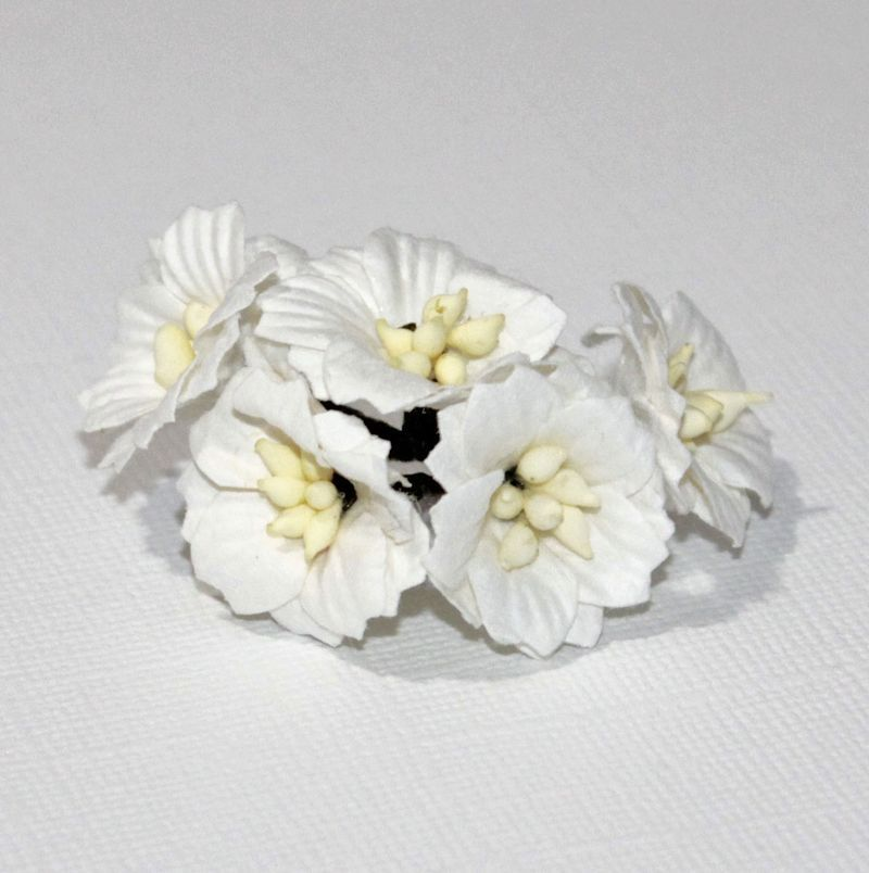 Mulberry Flowers - Apple Blossoms - White