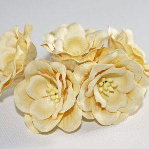 Magnolia - Solf Yellow