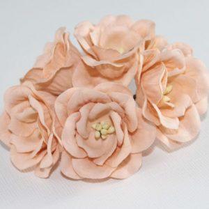 Magnolia - Coral