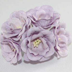 Magnolia - Lilac