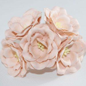 Magnolia - Peach