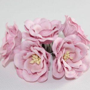 Magnolia - Soft Pink