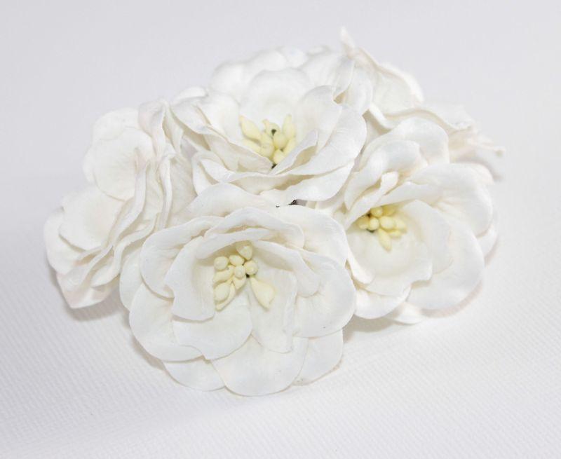 Magnolia - White