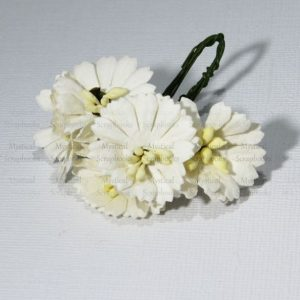 Mulberry Flowers - Cosmon Daisy - White