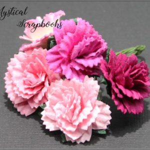 Mulberry Flowers - Carnations - Mixed Pinks
