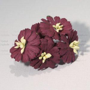 Mulberry Flowers - Cosmon Daisy - Burgundy