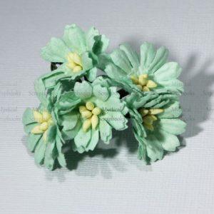 Mulberry Flowers - Cosmon Daisy - Mint