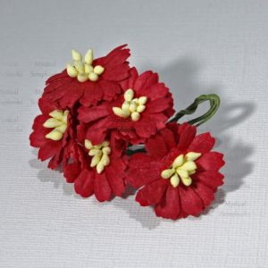 Mulberry Flowers - Cosmon Daisy - Red