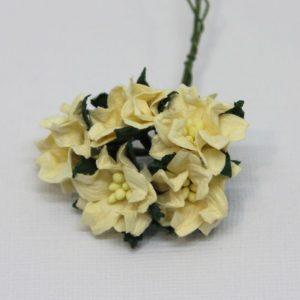 Mulberry Flowers - Gardenia - Small - Cream