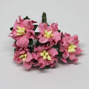Mulberry Flowers - Gardenia - Small - Dark Pink