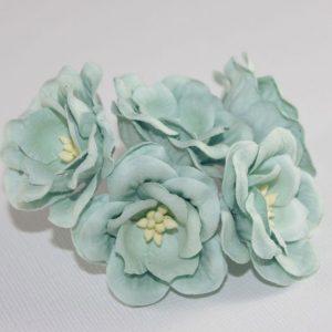 Magnolia - Mint
