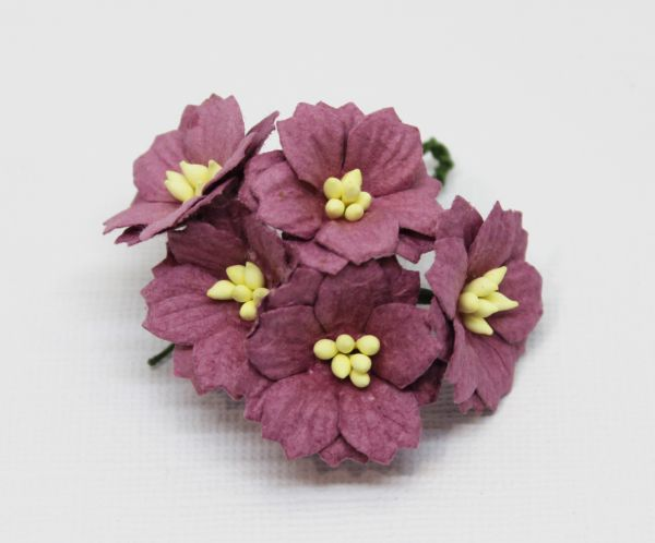 Mulberry Flowers - Apple Blossom - Dusty Mauve