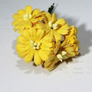 Mulberry Flowers - Cosmon Daisy - Yellow