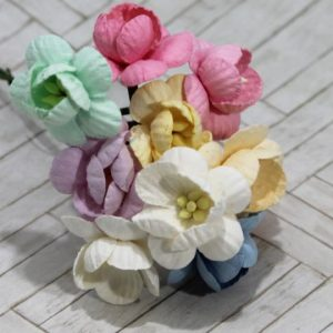 Mulberry Flowers - Cherry Blossom - Pastel Mix