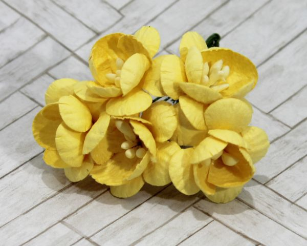 Mulberry Flowers - Cherry Blossom - Yellow