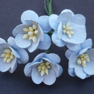 Mulberry Flowers - Cherry Blossom - Baby Blue