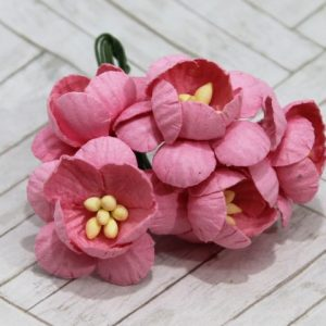 Mulberry Flowers - Cherry Blossom - Pink