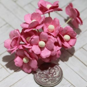 Mulberry Flowers - Sweetheart Blossoms - Pink