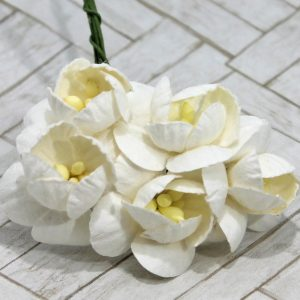 Mullberry Flowers - Cherry Blossom - White
