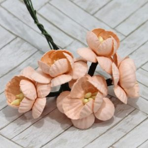 Mulberry Flowers - Cherry Blossom - Peach