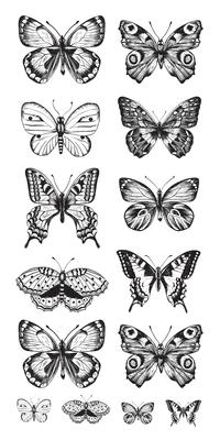 Kaisercraft - Acetate Stickers - Butterflies