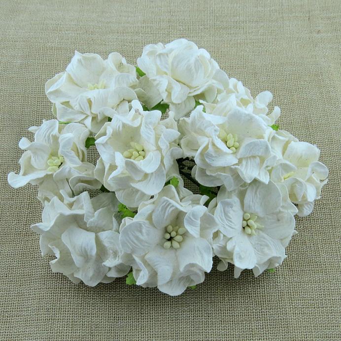 Mulberry Flowers - Gardenia - Med 3.5cm - White
