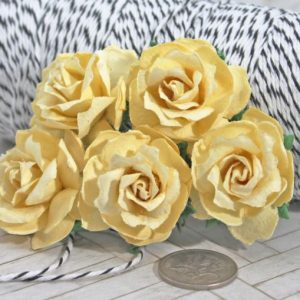 Mulberry Flowers - Wild Rose 30mm - Soft Yellow