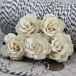 Mulberry Flowers - Wild  Rose 30mm - White